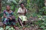 agricultoras pigmeas baka de Camerún